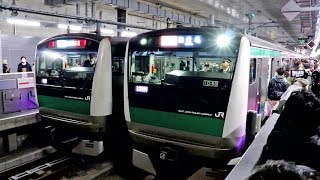 初日のE233系特急に乗ってみた 西谷→羽沢横浜国大 / 相鉄・JR直通