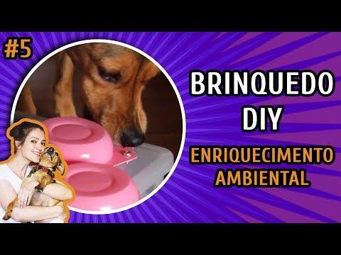 POTES DE IOGURTE - BRINQUEDO PARA CACHORRO | DIY