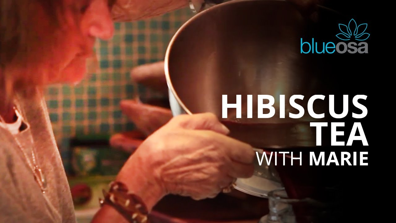 How to make hibiscus tea with marie youtube how to make hibiscus tea with marie izmirmasajfo