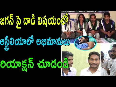 Ys jagan fance NRI australia warning To chandrababu on ys jagan incident in vigag | Cinema Politics