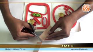 Make plant and animal cell model using simple materials   Science Projects   Butterfly Fields