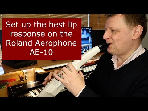 Set up the best lip response on the Roland Aerophone AE-10