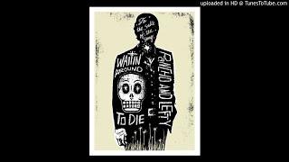 Townes Van Zandt - No Lonesome Tune (live 1990)