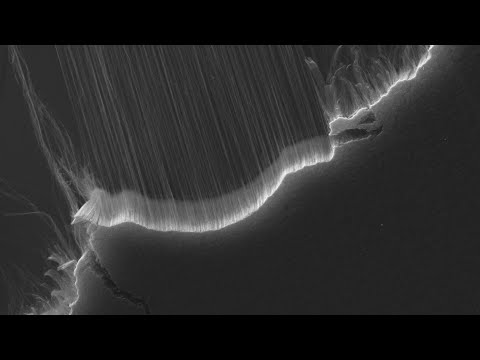 Electron microscope animation: Carbon nanotubes pulled into thread