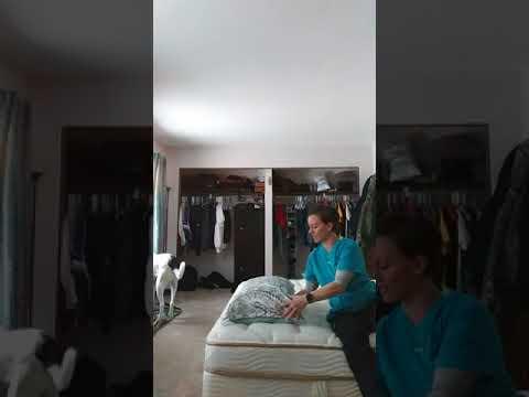 Saatva plush mattress initial review