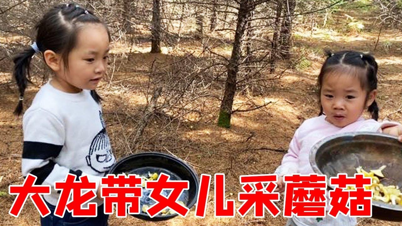 中秋节女儿放假回家,大龙领着上山去采蘑菇,大自然的景色太美了【东北大龙】