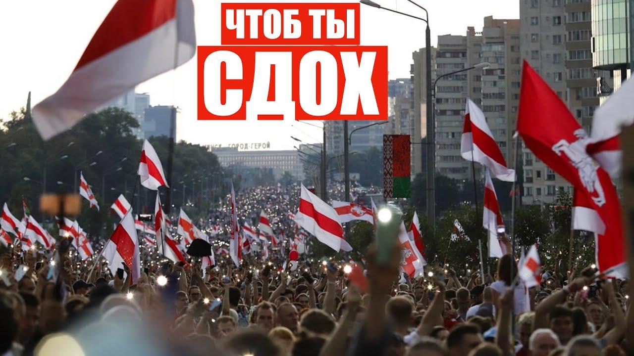 Сам ты крыса  Белорусы поздравили Лукашенко  200тысячный митинг в Минске
