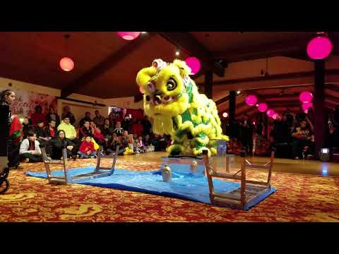 Calvin Chin Martial Arts Academy - East Coast Lion Dance Competition 2017