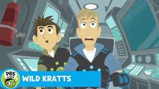 Wild Kratts: Attack of the Goblin Shark thumbnail