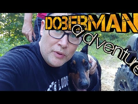 Doberman Picnic Running Trip = Lost GoPro Hero and a Scare