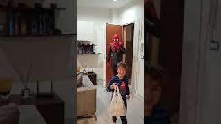 Spiderman viene a casa