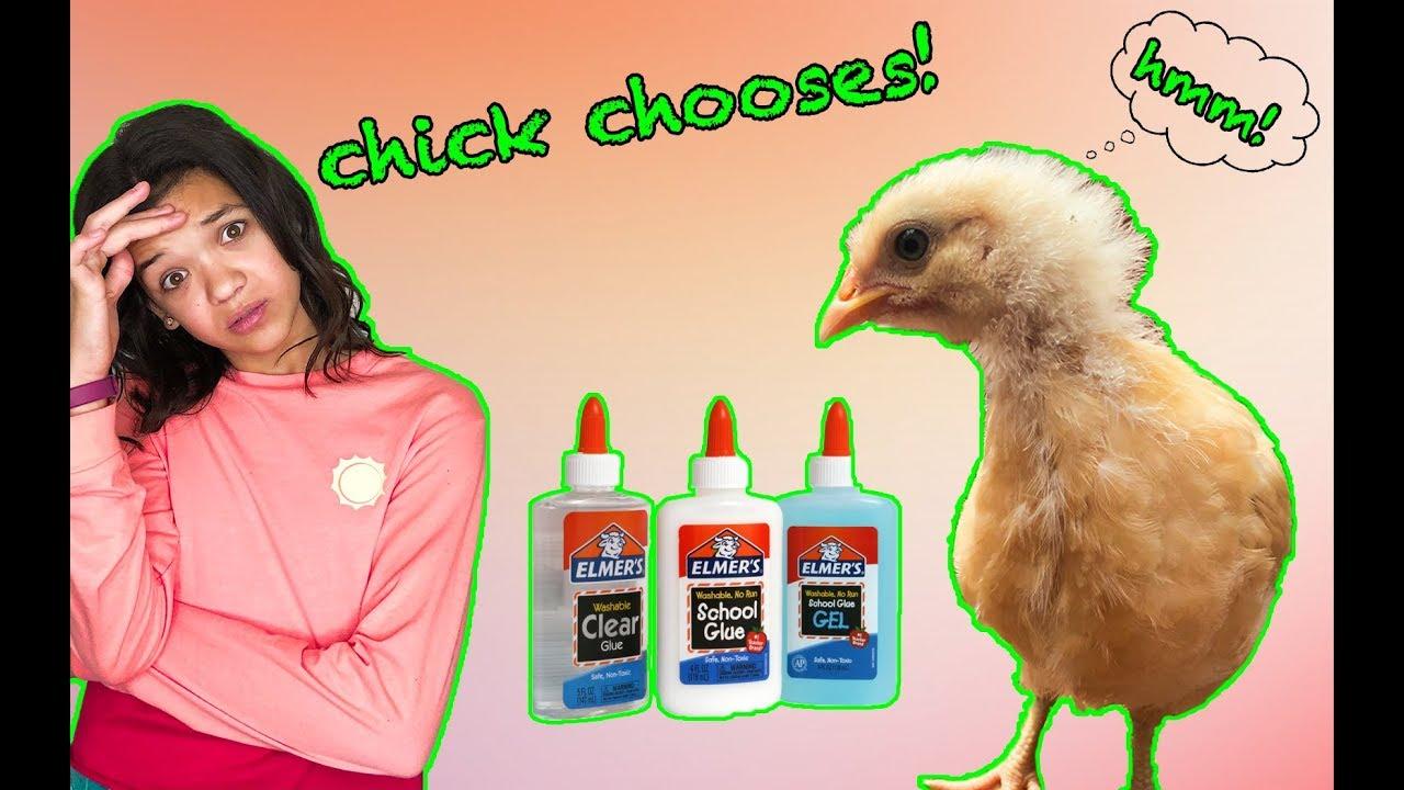 PET CHICKEN chooses my SLIME INGREDIENTS!  Bad Idea!
