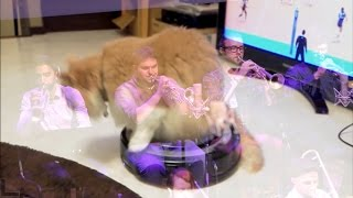 cats on roombas + jazz metal [exigence mvmt 3 live @ roulette by MxE]