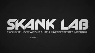Skank Lab #1 - Mahom meets Panda Dub [TEASER]