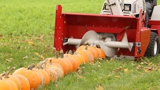 100 Pumpkins vs Snowblower Thumbnail