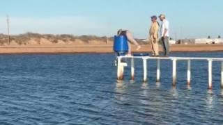 AQ1 feeding system in shrimp farms in Sonora, Mexico