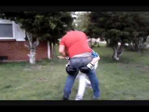 Team Lunatics boxing :D