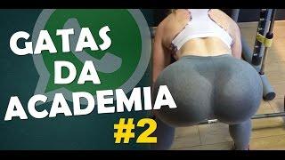 TOP VÍDEOS GATAS TREINANDO NA ACADEMIA #2