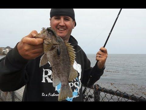 Surf Fishing With Bass Gear, Carmel & Monterey CA! Ft. Travis Moran