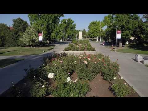 Fresno State Rose Garden