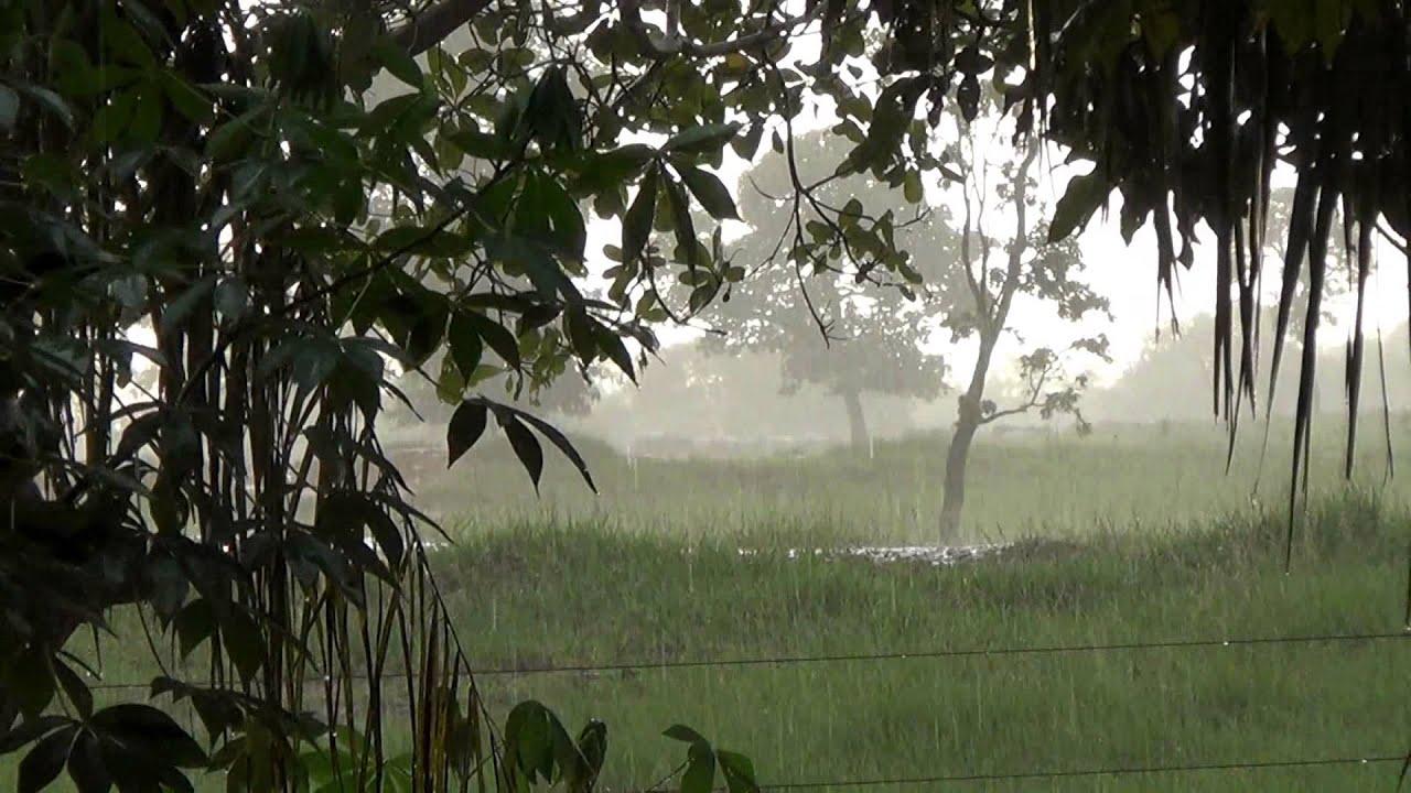 Rain on the farm, Sons of rain on the roof, Joy farmer, - YouTube