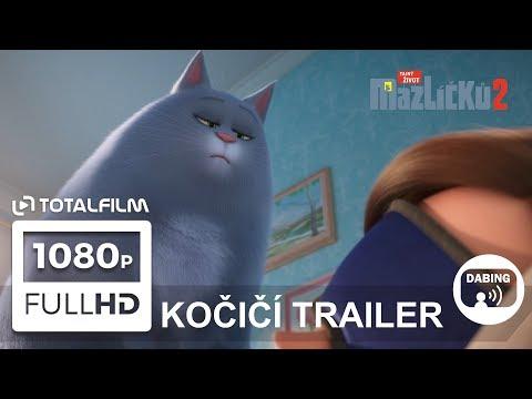 Tajný život mazlíčků 2 (2019) Kočičí trailer CZ dabing