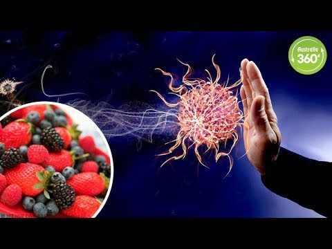 9 Foods That Strengthen Your Immune System - Australia 360