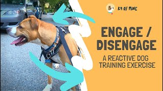 Engage / Disengage: The Best Reactive Dog Training Exercise