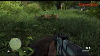 Far Cry 3 Free Roam Gameplay