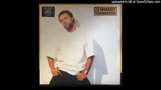 Shaggy - 03. Something Different Feat. Wayne Wonder