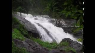 Video Valathode Waterfalls, Iritty, Kannur download MP3, 3GP, MP4, WEBM, AVI, FLV April 2018