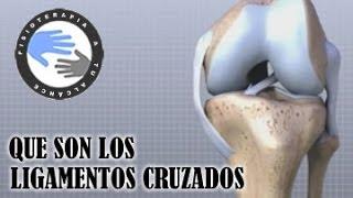 Ligamentos cruzados de rodilla, que son y como se lesionan