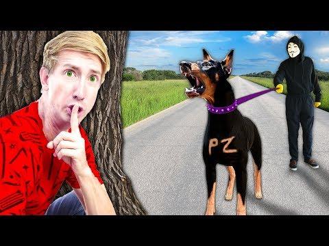 HACKER DOG FINDS