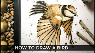 How to draw birds in pen quick