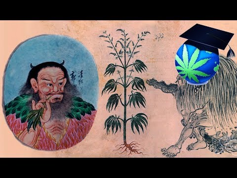 How Long Have Humans Used Cannabis? - Pre-Prohibition History Summary