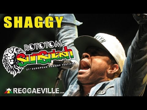Shaggy - Church Heathen @ Rototom Sunsplash 2014 [8/22/2014]