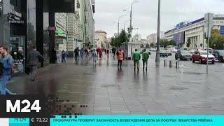 Водителей просят не парковаться рядом с деревьями из-за непогоды - Москва 24