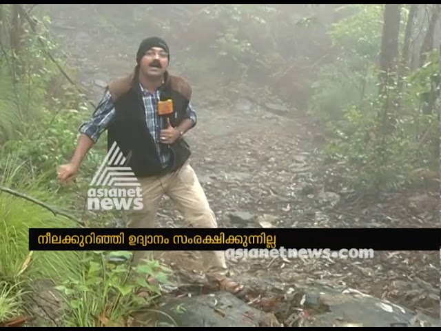 Kurinji sanctuary row:Forest and revenue department fails to evacuation of encroachment in Munnar
