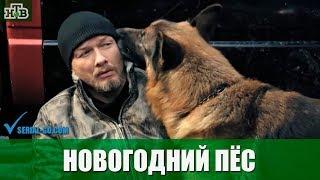 Фильм Новогодний Пес (2018) комедийный детектив на канале НТВ - анонс
