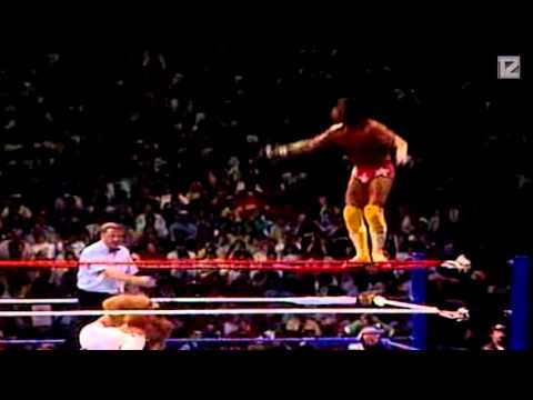 """TZ"" Ricky Steamboat vs Randy Savage - Wrestlemania 3 - Highlights HD"