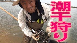 【2016年】 潮干狩り 漁業用貝ジョレン使用 [2016] shellfish Joren use...