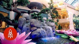 Step Inside a Secret Garden Oasis in Vegas