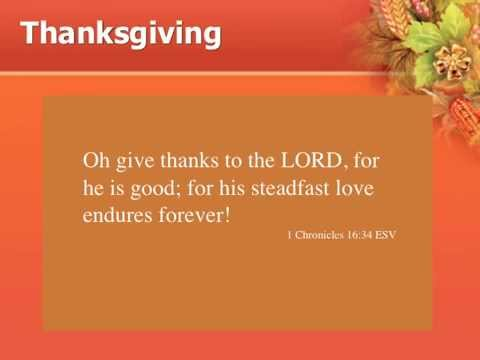 Great Thanksgiving Quotes (Video)