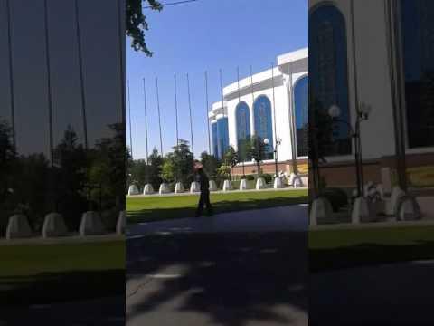 Знакомства в Ташкенте. Сайт знакомств в Ташкенте бесплатно