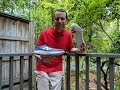 New Balance Fresh Foam Beacon Running Shoe Review