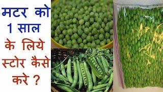 हरे मटर को साल भर के लिए कैसे स्टोर करें   How to Store Green Peas  Frozen Matar