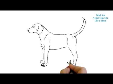 How to Draw a Dog Simple easy Drawing Puppy cartoon