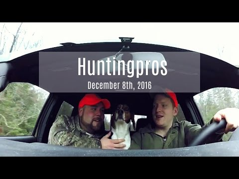 Snowshoe Hare Hunting December 8th, 2016.