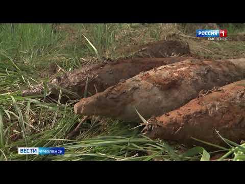 Взрывоопасное «эхо войны» уничтожили смоленские спасатели