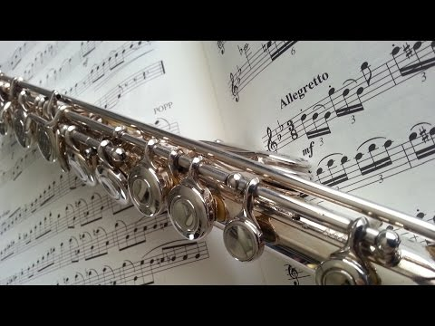 Best Flute Ringtone For Phones[Wind Instrument Music For Your Soul]